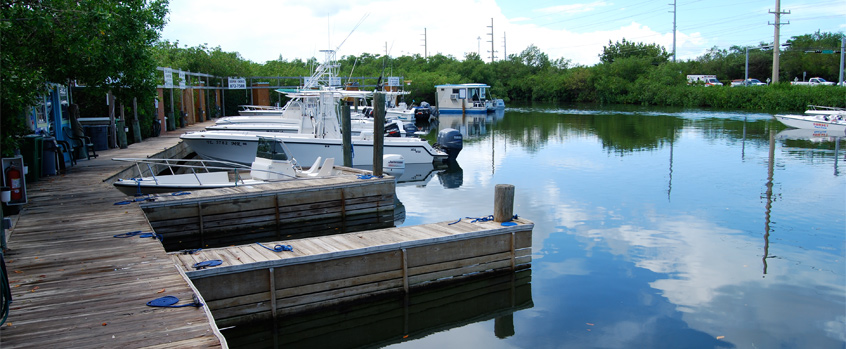 Hurricane Hole Marina